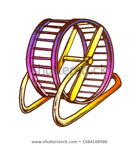 работает колесо внутренний хомяк ретро вектора Сток-фото © pikepicture