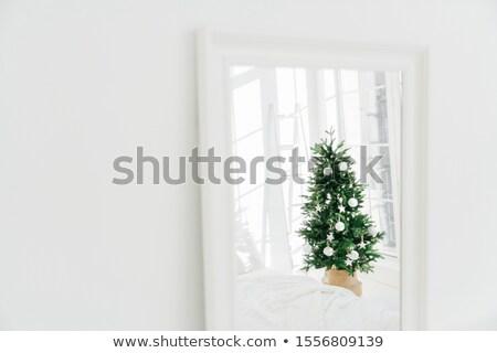 Ingericht kerstboom spiegel witte ruim kamer Stockfoto © vkstudio
