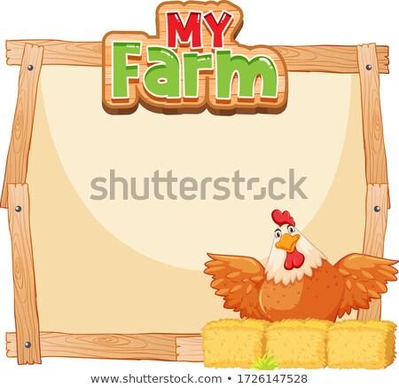 Fronteira modelo projeto frango feno ilustração Foto stock © bluering