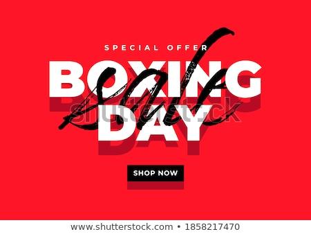 ボクシング 美しい 若い女性 着用 ペア ボクシンググローブ ストックフォト © piedmontphoto