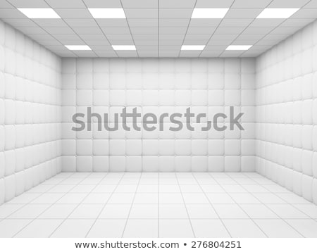 Padded Cell in a Mental Hospital Stock photo © AlienCat