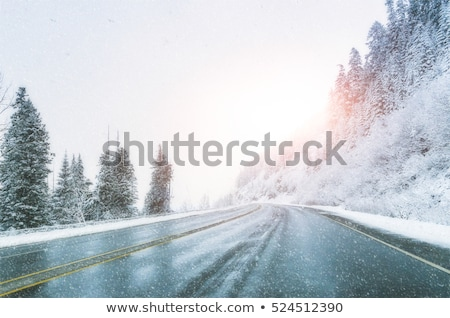 Empty road in winter Stock photo © CaptureLight
