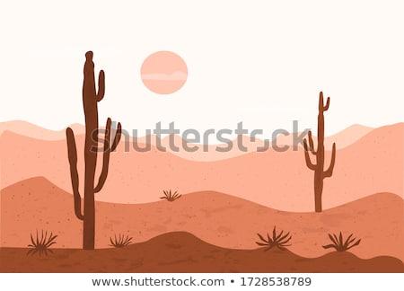 Soyut çöl etli dışında arka plan yeşil Stok fotoğraf © feverpitch