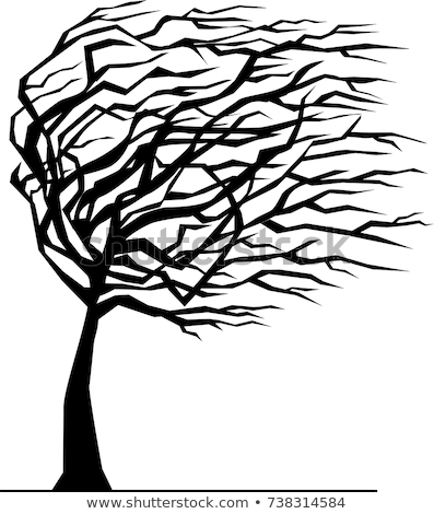 Windswept Trees Silhouette  Stock photo © Frankljr
