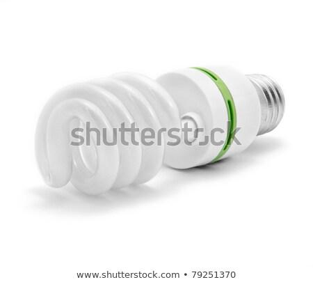 energia · hatékony · villanykörte · izolált · fehér · zöld - stock fotó © dezign56
