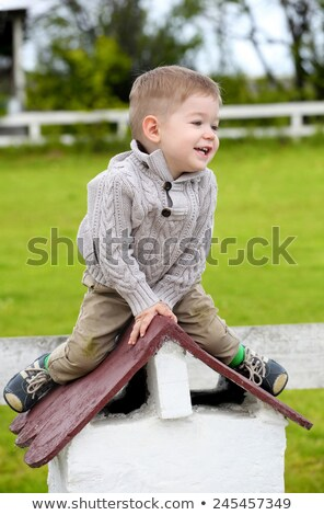 trendy 2 years old baby boy posing stock photo © vladacanon