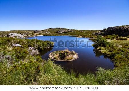 Mountain lake, Serra da Estrela, Portugal Stock photo © homydesign