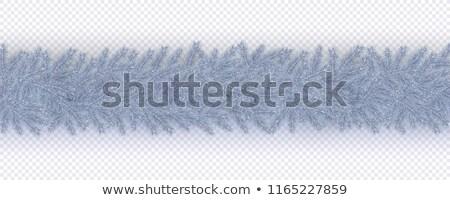 Fagyott lucfenyő ág napos tél nap Stock fotó © Juhku