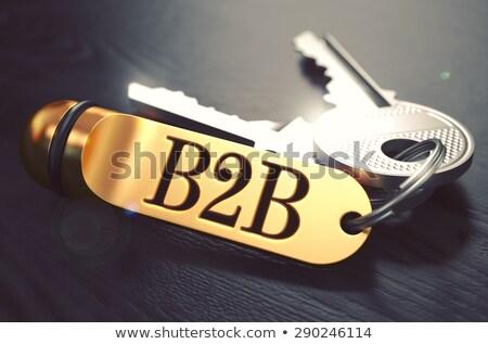 Sleutels woord b2b gouden label business Stockfoto © tashatuvango
