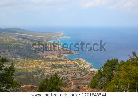 Shoreline of Blue lagoon at Akamas, Cyprus Stock photo © Mps197