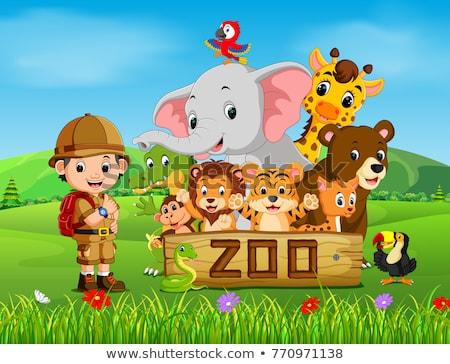 Cartoon Smiling Zookeeper Man Stock photo © cthoman