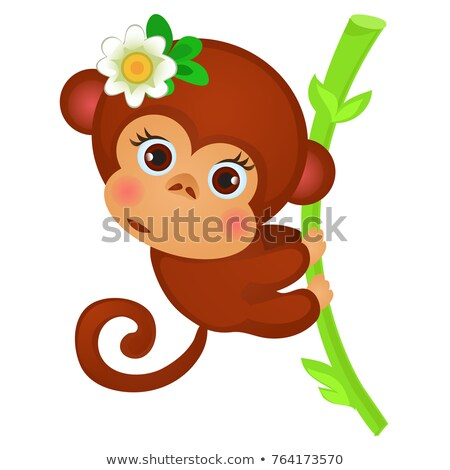 Cute little monkey on a stalk of bamboo isolated on a white background. Exotic animals. Sketch of fe Stock photo © Lady-Luck