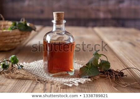 Ot taze bitki şişe genç kökleri Stok fotoğraf © madeleine_steinbach