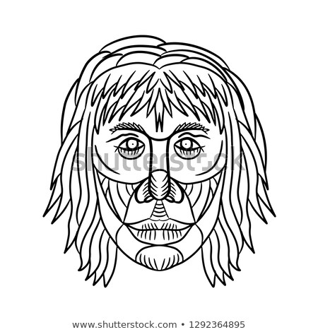 Homo Habilis Face Front Drawing Stock photo © patrimonio