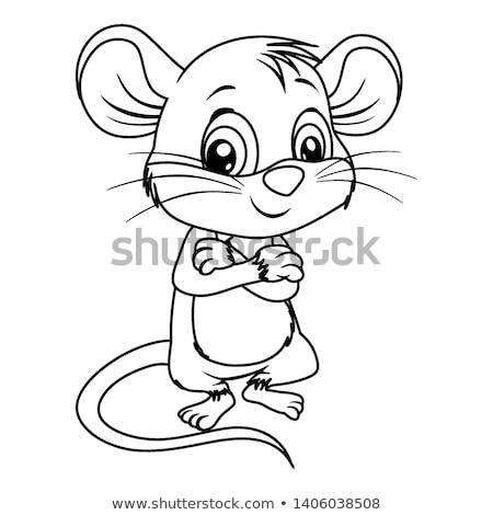 egér · patkány · rajz · kifestőkönyv · feketefehér · illusztráció - stock fotó © izakowski