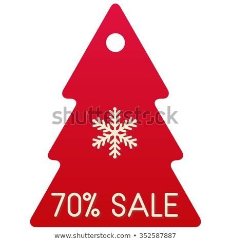 Finale christmas verkoop procent winter korting Stockfoto © robuart