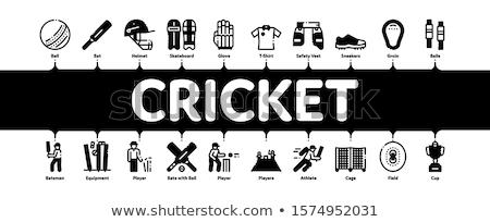 Krikett játék minimális infografika szalag vektor Stock fotó © pikepicture