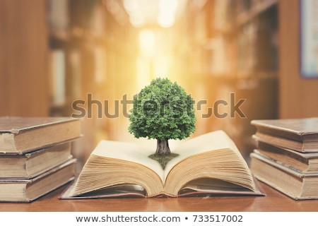 Investment in Education Concept Stock photo © -TAlex-