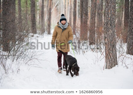 Happy young man in winterwear holding leash of black retriever during chill Stock photo © pressmaster