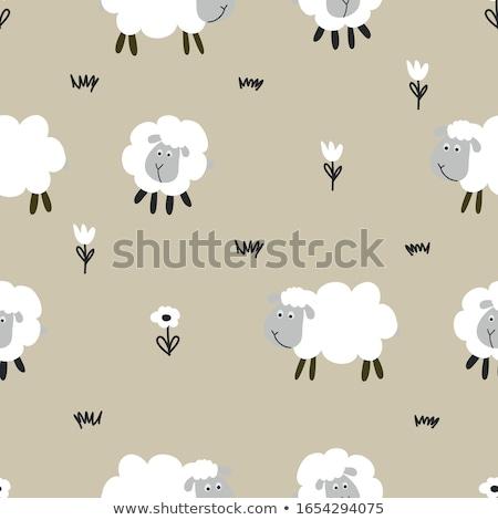 мало ягненка овец шаблон смешные рисованной Сток-фото © Zsuskaa