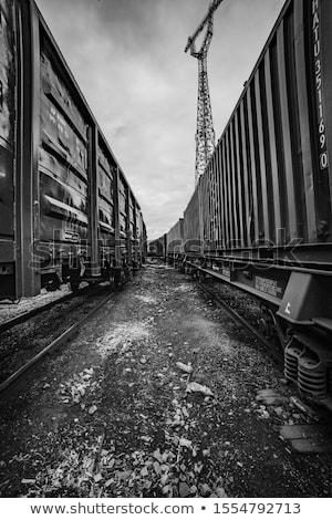 Rail árboles tren acero línea perspectiva Foto stock © leeser