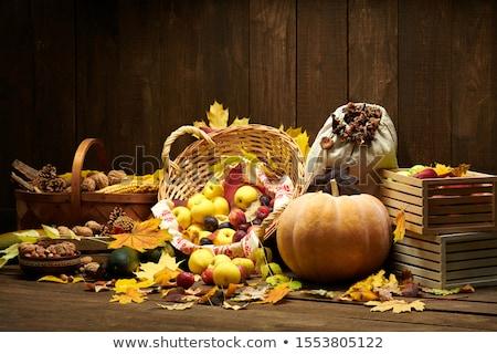 pear, pumpkin and many nuts Stock photo © gewoldi