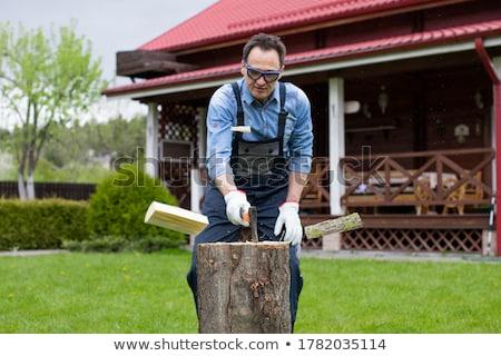 munkás · hordoz · készlet · arc · férfi · boldog - stock fotó © photography33