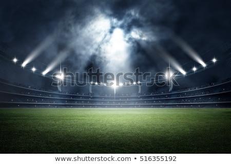 sports field at night stock photo © witthaya