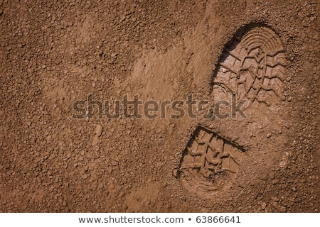 Imprint of the shoe on the dried and cracked mud. Stock photo © pashabo
