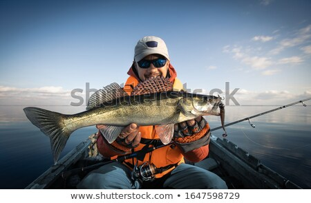 fishing man with big zander fish Stock photo © Mikko