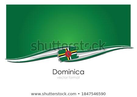 Bandeira Dominica mão cor país estilo Foto stock © claudiodivizia