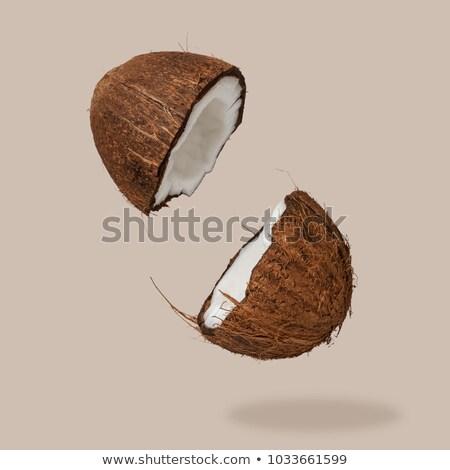 twee · kokosnoot · geïsoleerd · witte · bos · vruchten - stockfoto © taden