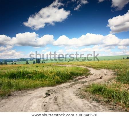 Kırsal yol çim doğa kir çim Stok fotoğraf © mycola