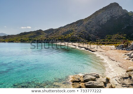 Maquis covered coastline of Desert des Agriates in Corsica Stock photo © Joningall