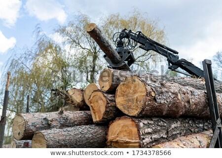 trator · de · volta · madeira · fogo · floresta · construção - foto stock © jarin13