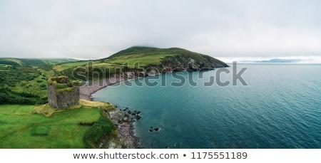 strand · panoramisch · zakynthos · Griekenland · water - stockfoto © kayco