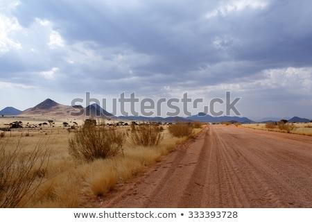 Panorama Of Fantrastic Namibia Moonscape Landscape Zdjęcia stock © Artush