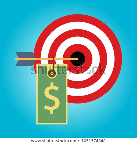 Cost Management - Arrows Hit in Red Target. Stock photo © tashatuvango