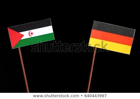 Németország western Szahara zászlók puzzle izolált Stock fotó © Istanbul2009