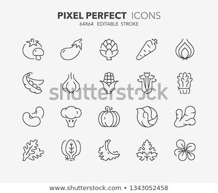 Stock fotó: Brokkoli · vonal · ikon · háló · mobil · infografika