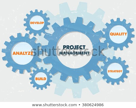 project management and business concept words in grunge flat des Stock photo © marinini