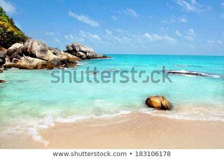Tropikalnej plaży raj phuket Tajlandia Zdjęcia stock © pzaxe