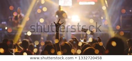 Pop zanger fase menigte juichen Stockfoto © illustrart