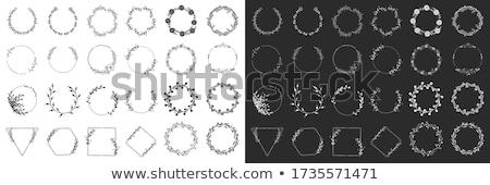 Monogram vektör çerçeve logo şablon model Stok fotoğraf © butenkow