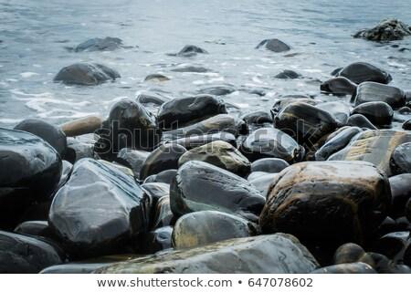 черно белые пляж камней аннотация фон Сток-фото © latent