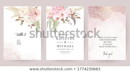 colorido · buquê · belo · rosa · jacinto · borrão - foto stock © anatolym