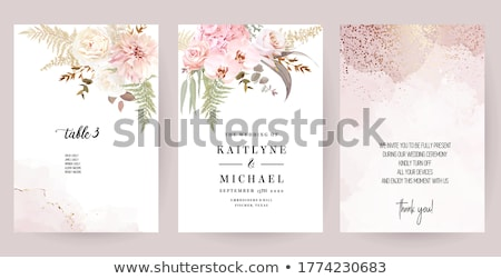 pink orchids Stock photo © AnatolyM