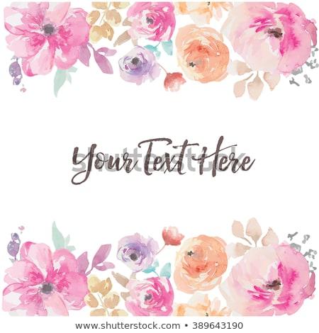 fleur · cadre · vecteur · dessinés · à · la · main · floral · décoratif - photo stock © Elensha