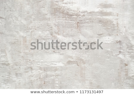Abstract Background with Woodgrain Elements in Warm White Stock photo © frannyanne