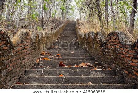 öreg kő lépcsőfeljáró fű Stock fotó © njnightsky